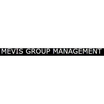 Mevis Group Management Srl