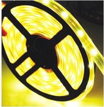 Benzi cu LED de la Ledke Technology Co., Ltd