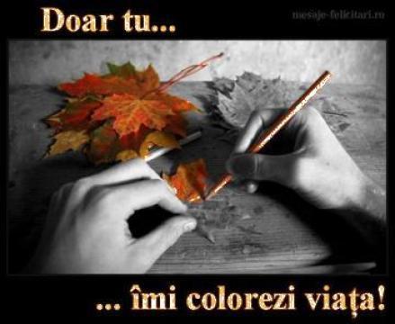 Felicitari pentru ocazii de la Mesaje-felicitari.ro