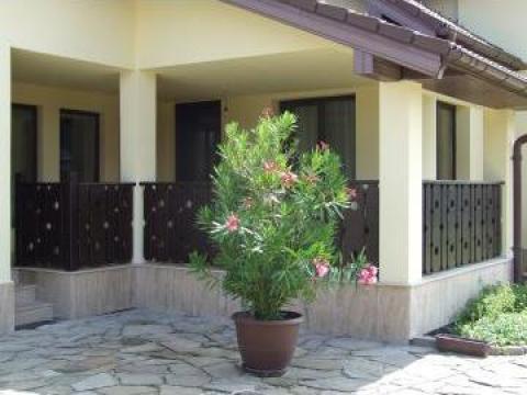 Gard Terasa Din Lemn Bistrita S C Confort S R L Id 233781