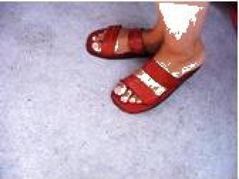 Papuci, sandale, piele, slapi