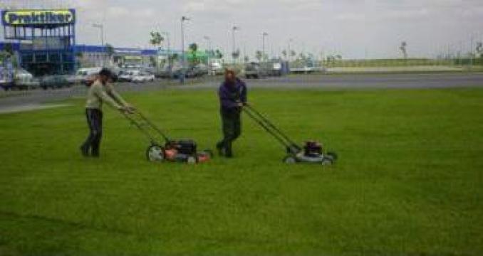Servicii de tundere gazon cu masini cu motor termic