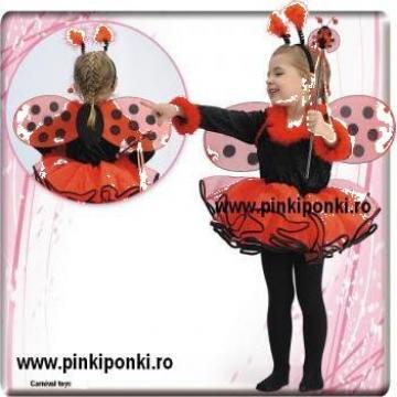 Inchiriere costume carnaval copii si adulti de la Mercato Best
