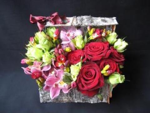Cutie Aranjament Floral Cati Bucuresti Ane Mone Id 360519