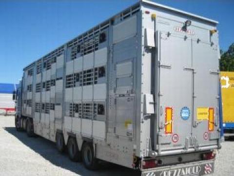 Transport animale vii cu masina autorizata de la S.c. Invest Com S.r.l
