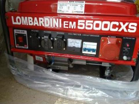 Generator trifazic Lombardini de la Barbus Celsius