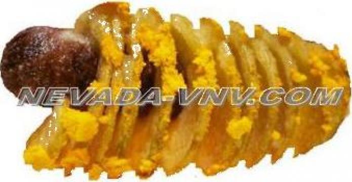 Produs fast-food NevadaChipsDog de la Nevada Vnv Srl