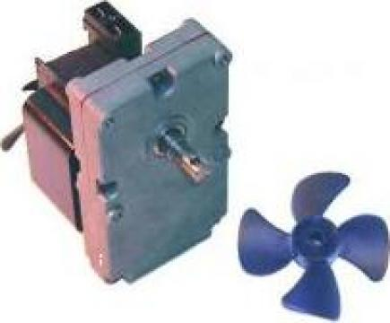 Motor rotisor