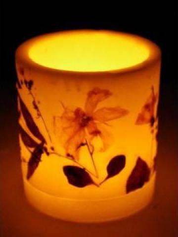 Lumanare decorativa cilindru cu plante de la Degalex Art