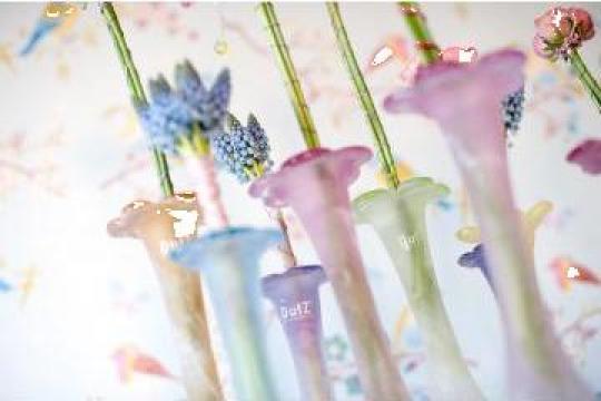 Vaze Flori sin sticla de la Deluxe Decor Rituals