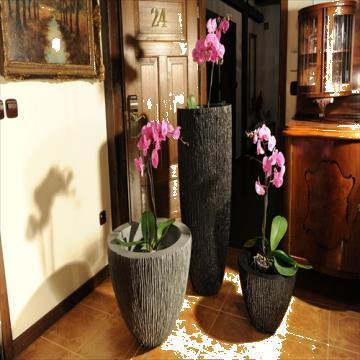 Ghivece decorative - Decorative pots de la Roto M