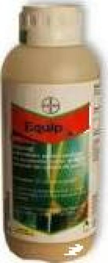 Erbicid porumb Bayer Equip 1L