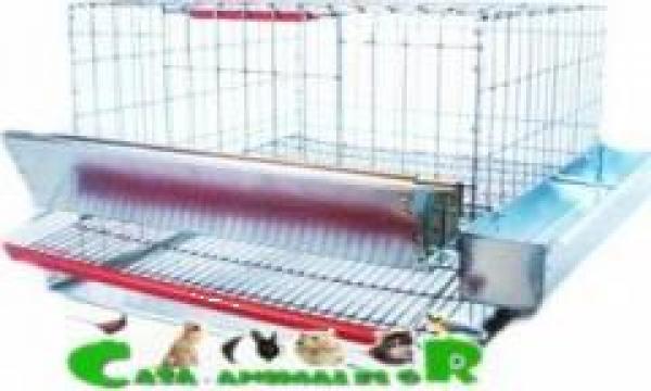 Cusca pentru 15 prepelite ouatoare de la Www.casa-animalelor.ro