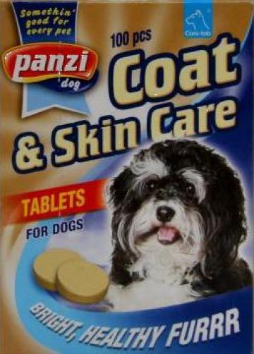 Vitamine pentru piele si blana caini Panzi