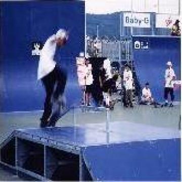 Piste skateboard de la Conamo Sport Srl