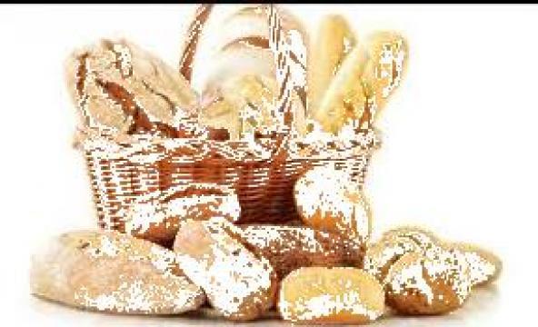 Masina ambalat paine si produse panificatie