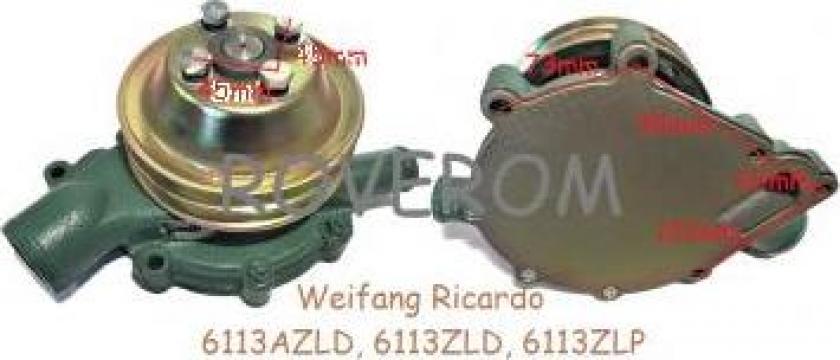Pompa apa Weifang Ricardo 6113AZLD, 6113ZLD, 6113ZLP