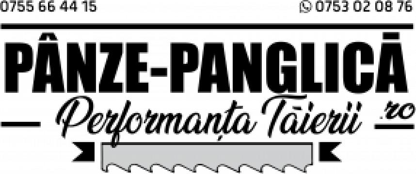 Panza 2645x27x4/6 fierastrau panglica metal Bernardo MBS 290 de la Panze Panglica Srl
