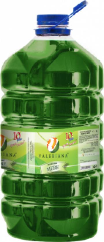 Sirop pentru granita 5 litri mere de la Cristian Food Industry Srl.