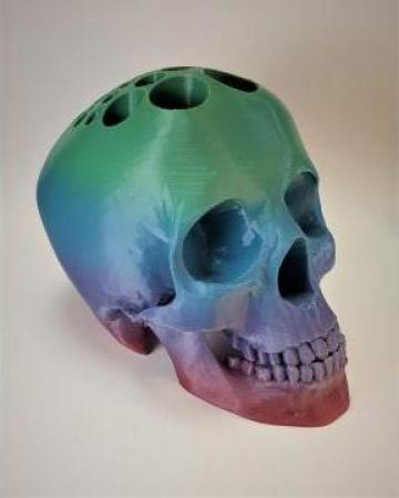 Craniu model printat 3D