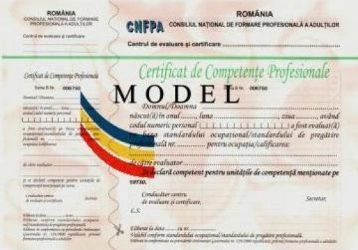 Evaluare competente profesionale Sudor electric de la Estetic Clas Alexandria