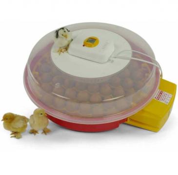 Incubator de oua automat Puisor X2 de la Impotrivadaunatorilor.ro