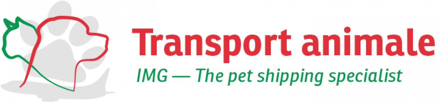 Transport international animale cu avionul de la Infinite Marketing Group Srl