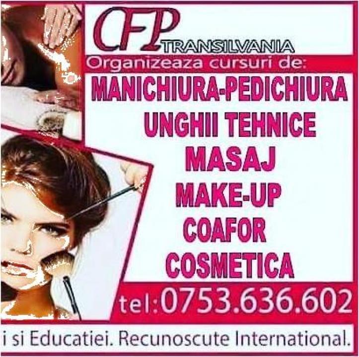 Curs cosmetica