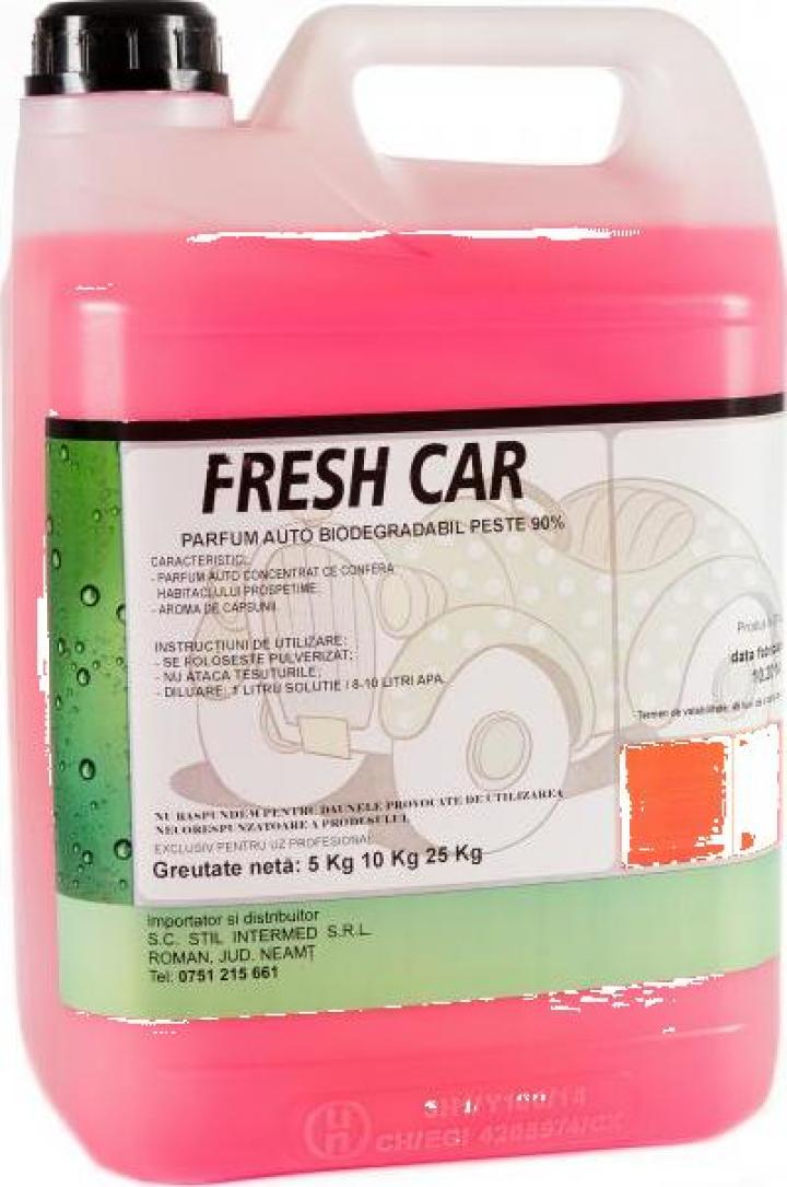 Parfum auto concentrat Fresh Car
