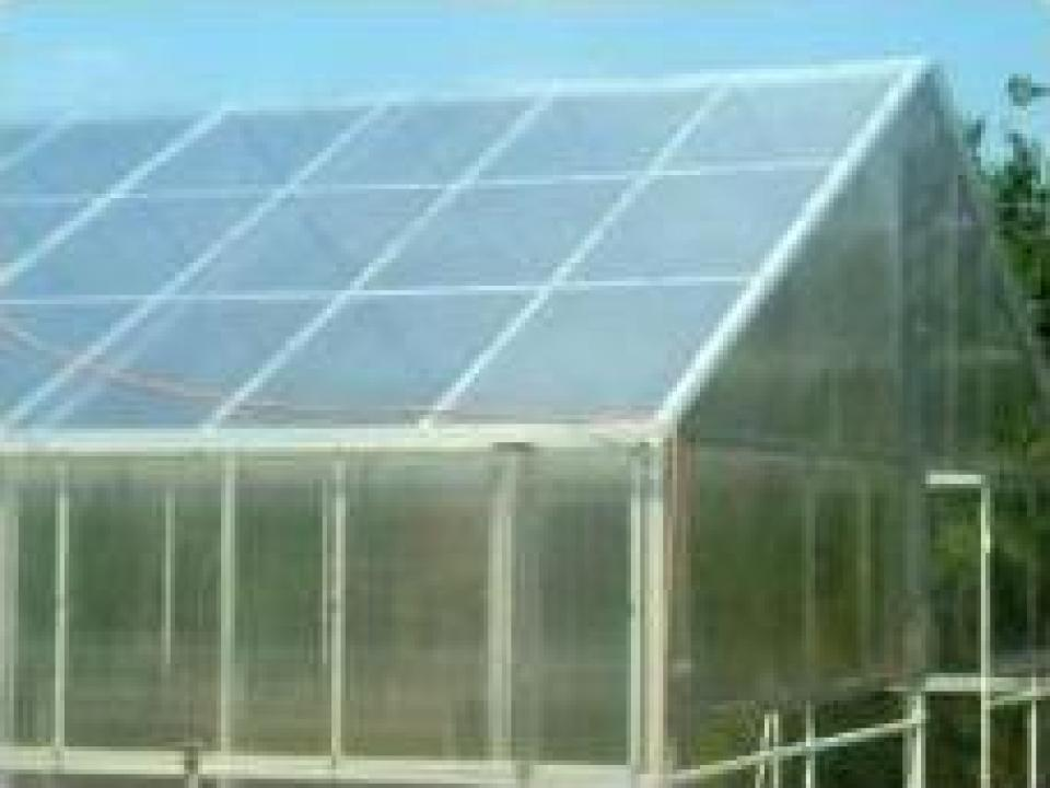 Sera/solar policarbonat
