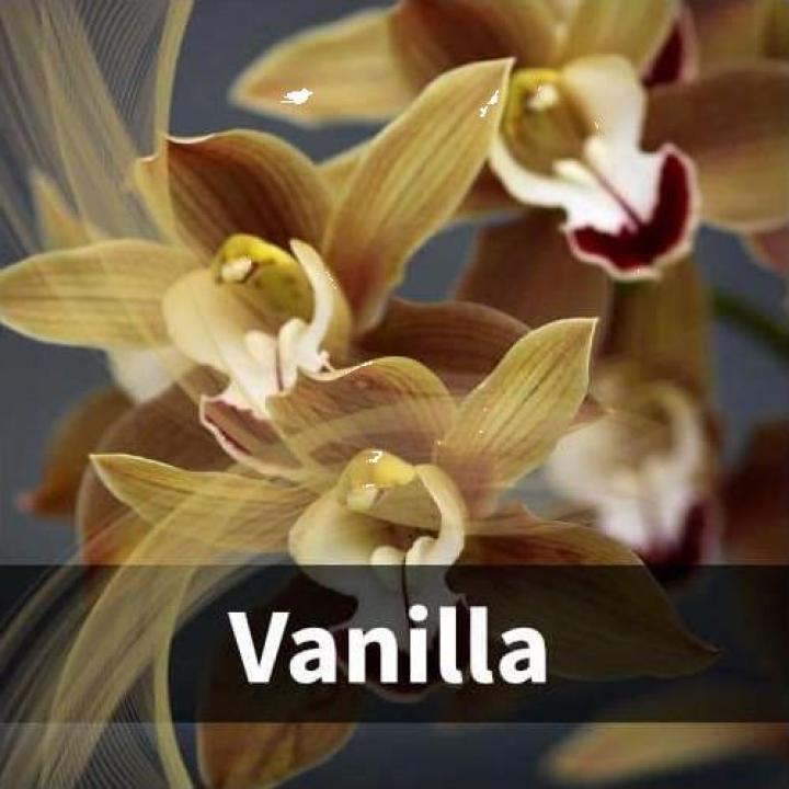 Odorizant cu aroma - Vanilla