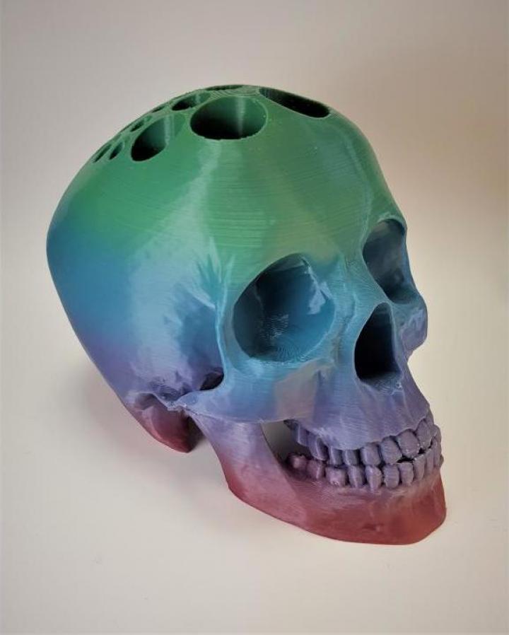 Craniu model deosebit